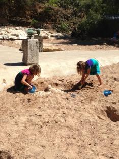 Onze paleontologen