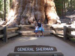 General Sherman.