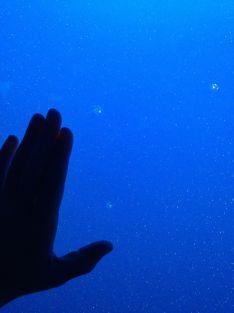 Tine's hand versus het kwalletje...