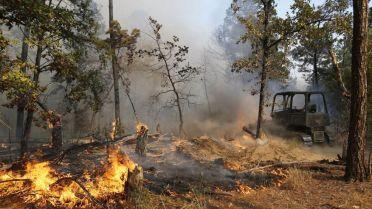 Bos- en weidebrand in Bastrop
